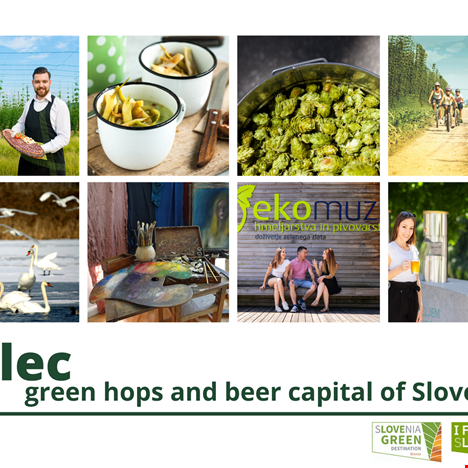 Green Scheme of Slovenian tourism